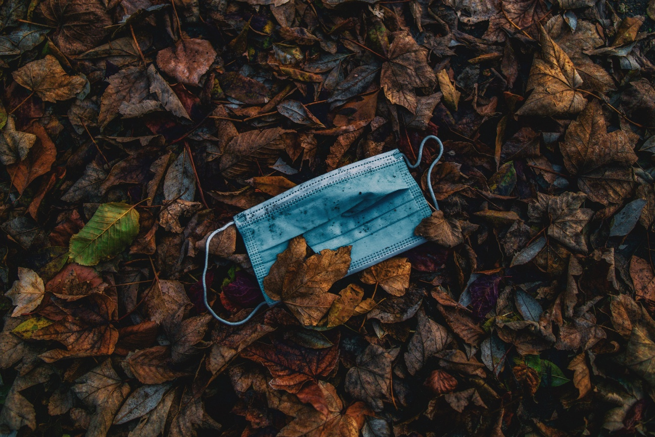 No. 69 - Covid Mask in Autumn Leaves by Christian Lue